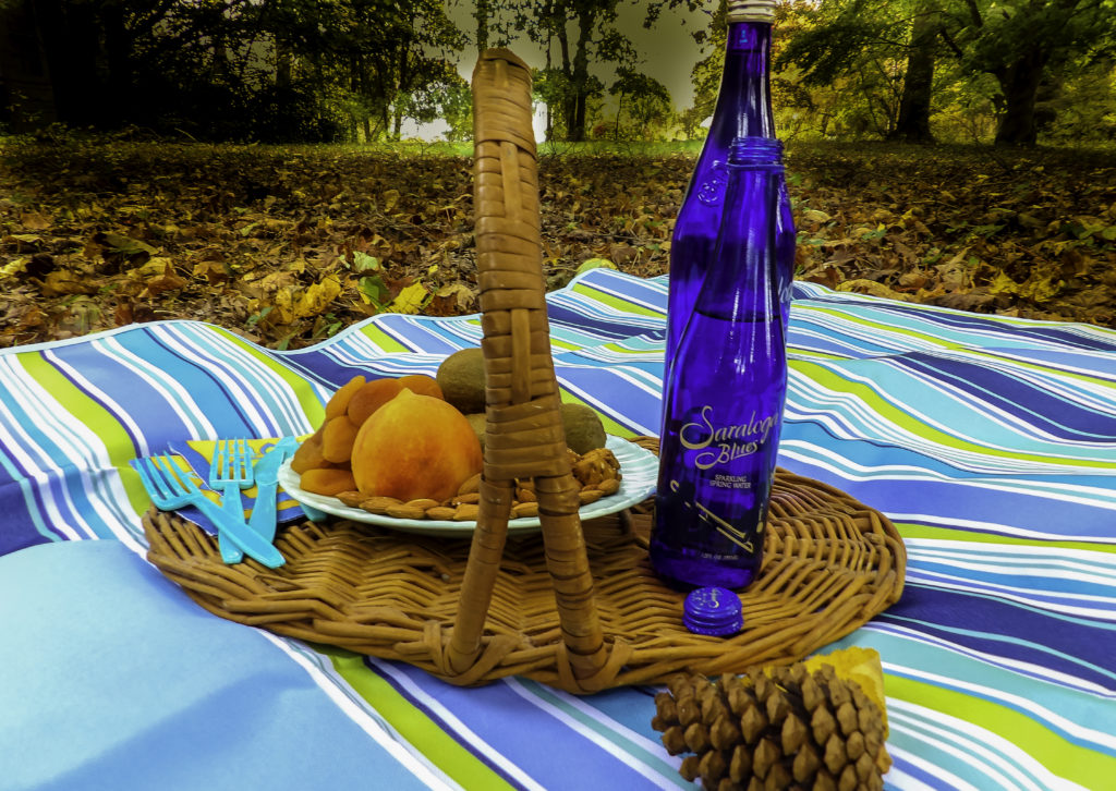 GIFTS FOR FOODIES AL FRESCO DINING LIKE A GROWN-UP: THE PARYVARA ALL PURPOSE MAT